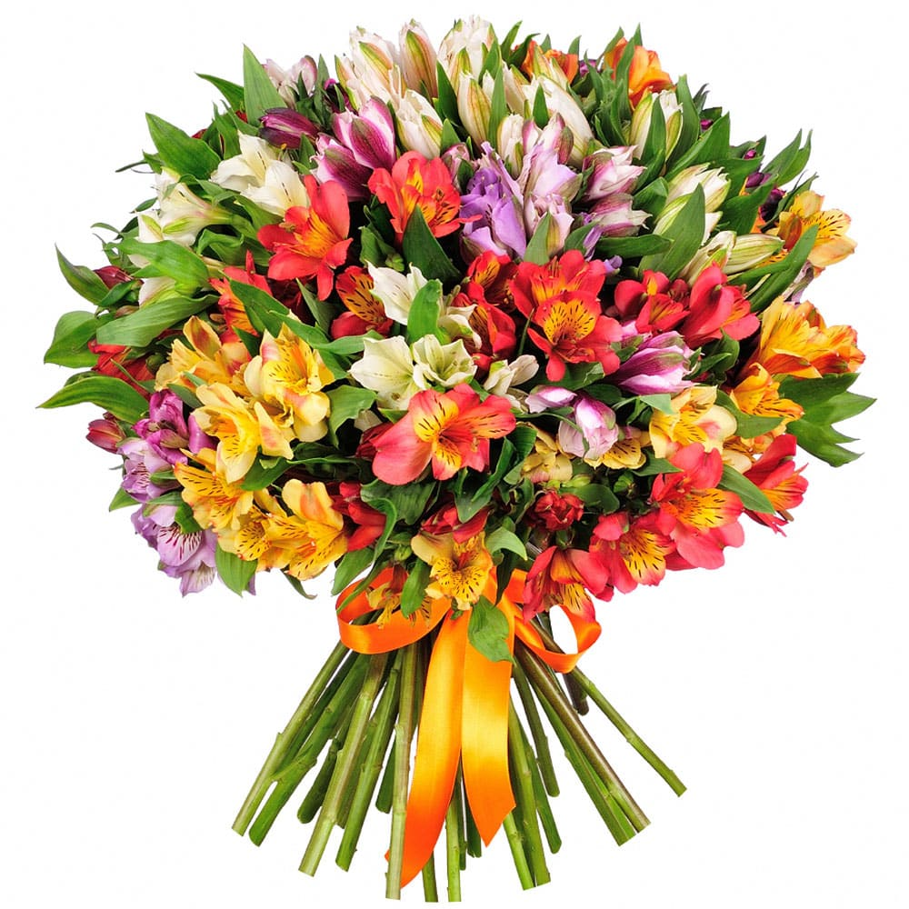 Заказ цветов в америке с доставкой, базы цветов